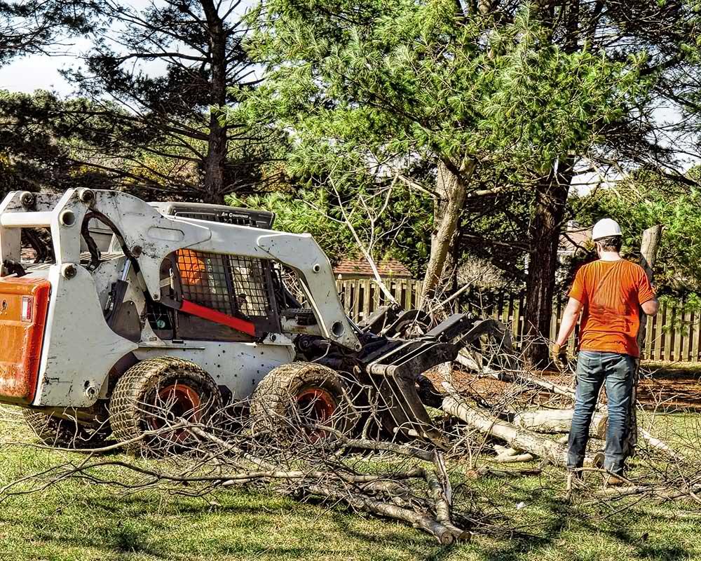 Tree Service Pittsburgh - Arborist